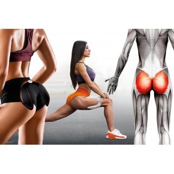 Electro-estimulador muscular para fortalezer la parte de los Glúteos, Muslos y Espalda